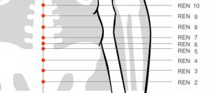 Ren meridian acupressure points Ren 6 for yang deficiency