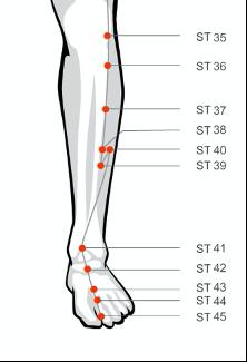Stomach acupressure massage points sodalite