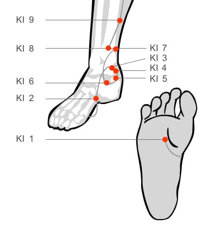 Kidney acupressure massage points of the foot and lower leg