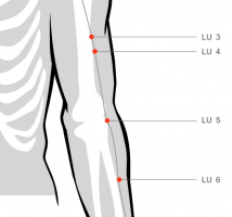 Lung acupressure points 3 to 6 clear qi stagnation