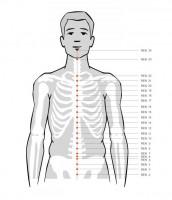 REN Conception Vessel acupuncture acupressure points